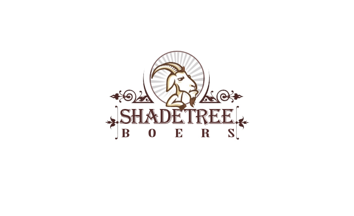 Modern, Masculine, Farm Logo Design For Shadetree Boers By