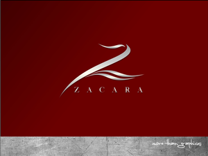 Letter Z Logo Designs