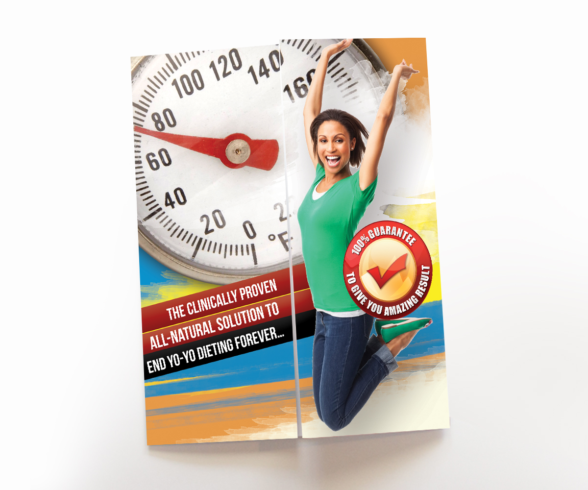 personable colorful business brochure design for lavenia