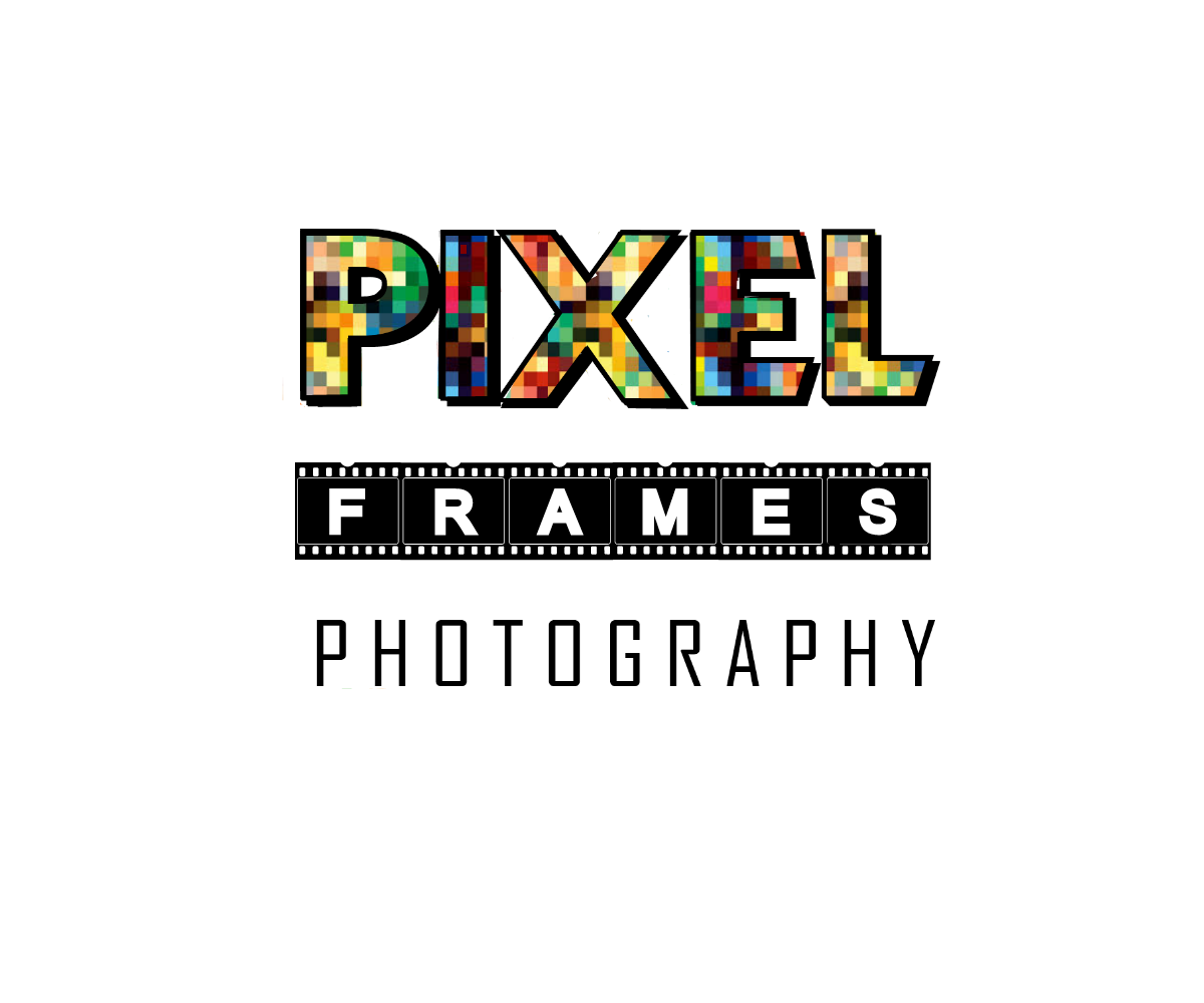 it company logo design for pixelframes photography by inak
