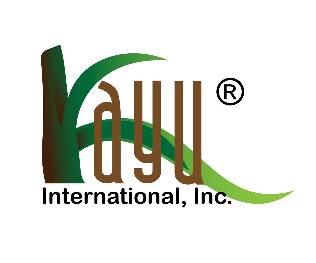 It company logo design for kayu international inc for International design company