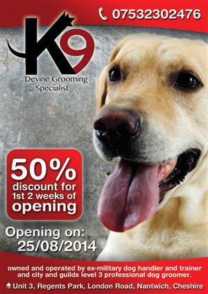 Dog Flyer Design 1000s Of Dog Flyer Design Ideas
