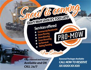snow removal flyers snow removal flyer design at designcrowd. Black Bedroom Furniture Sets. Home Design Ideas