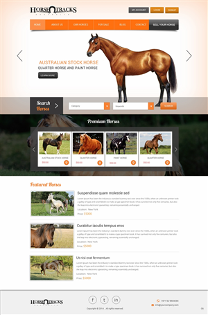 Web Design by pb - Website Design Needed for Performance Horse Tra...