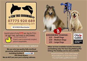 Flyer Design by venuslp - Dog Grooming Flyer Design