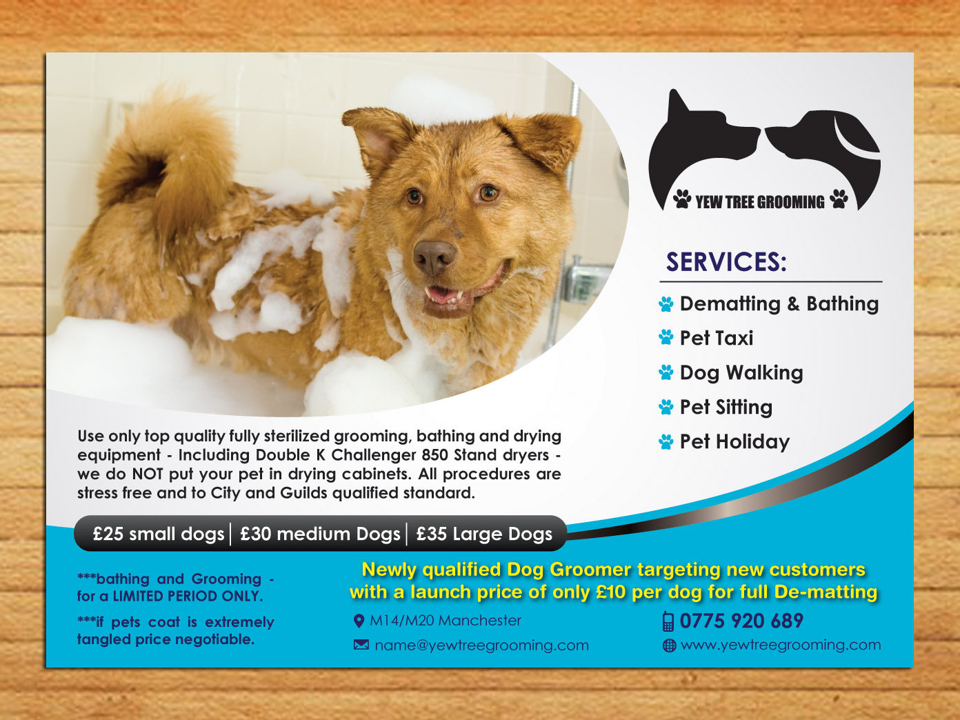 flyer design for yew tree dog grooming by smart design  flyer design by smart for dog grooming flyer design design 4494184