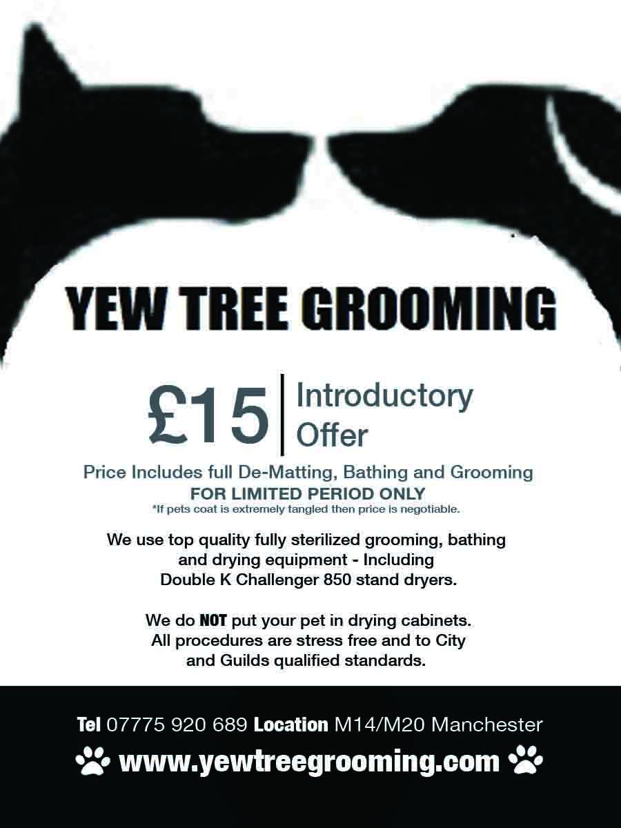 Yew Tree Dog Grooming