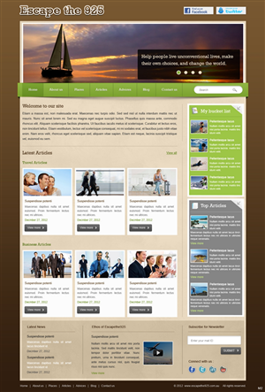 Website For Web Bids 1316654