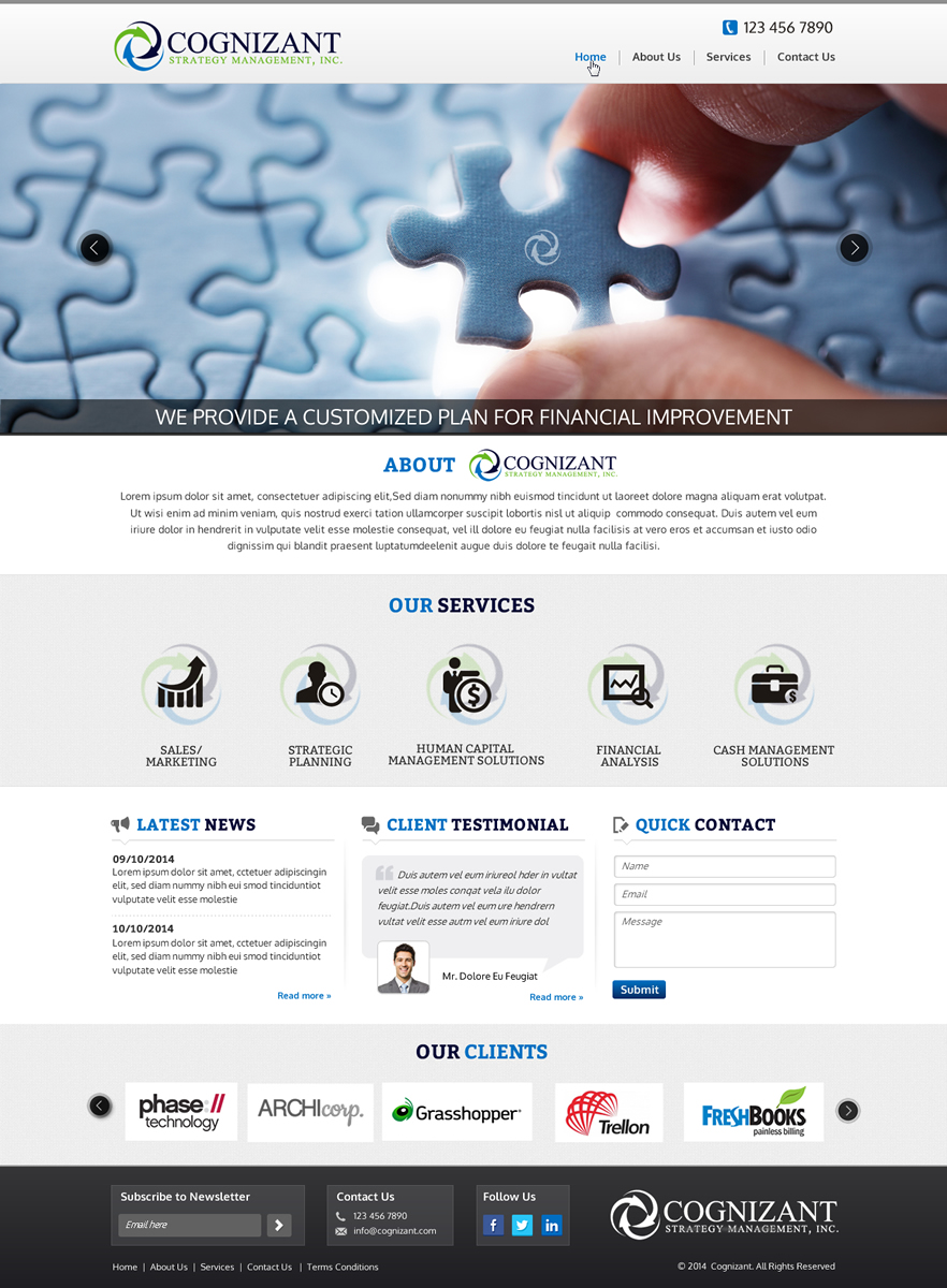 Management consulting web design for driveprofit llc by for Web design consultant