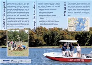 Brochure Design by dejan_dzamtovski - Fundraising Brochure Design for Environmental O ...