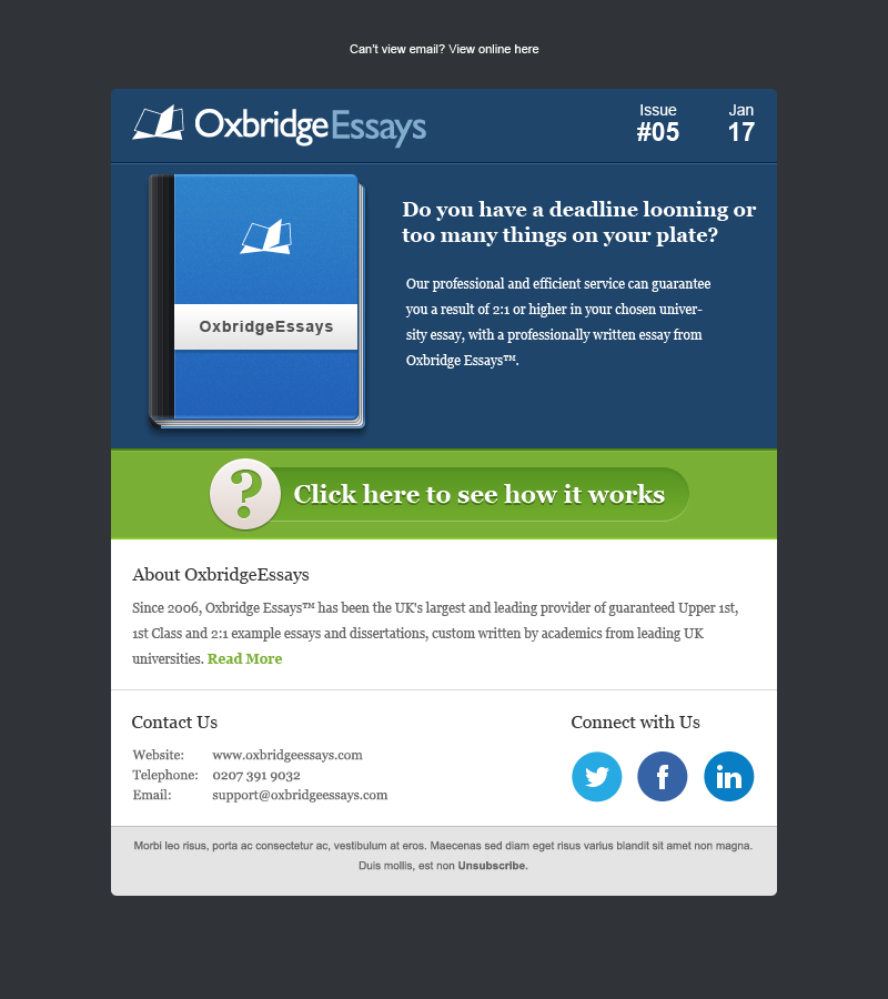 elegant playful it company newsletter design for a company by