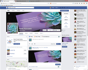 Facebook Design by JDZYN - Totally Succulent Container Gardens
