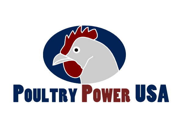 Elegant playful it company logo design for poultry power for Design company usa