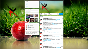Twitter Design by Bonaro Designs
