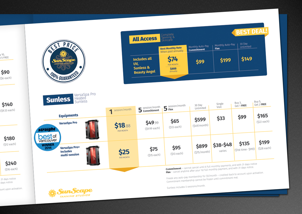 pricing brochure design for a company by ritesh singh design 5249987