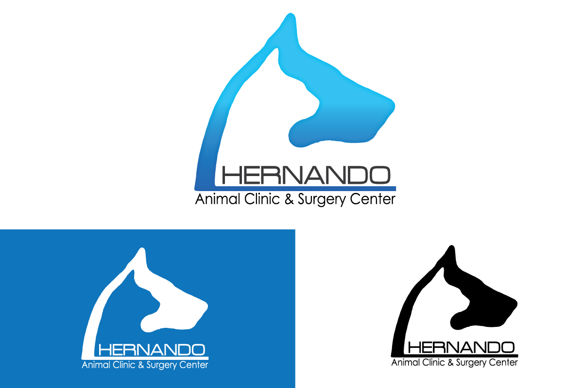 Modern, Professional, Veterinary Logo Design for Hernando