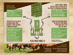 Brochure Design by mill - Online Cattle Auction Needs Brochure Design