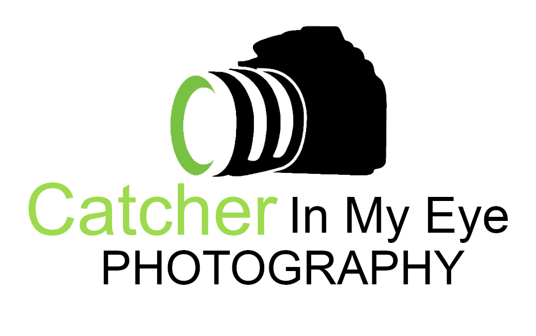 My Photography Logo | www.pixshark.com - Images Galleries ...