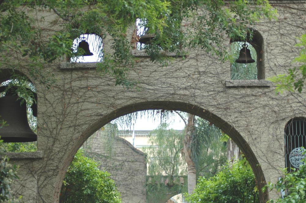 Photograph Submission for 'Radial Balance 2' Contest ... on symmetrical garden design, linear garden design, vertical garden design, asymmetrical garden design, rectangular garden design,