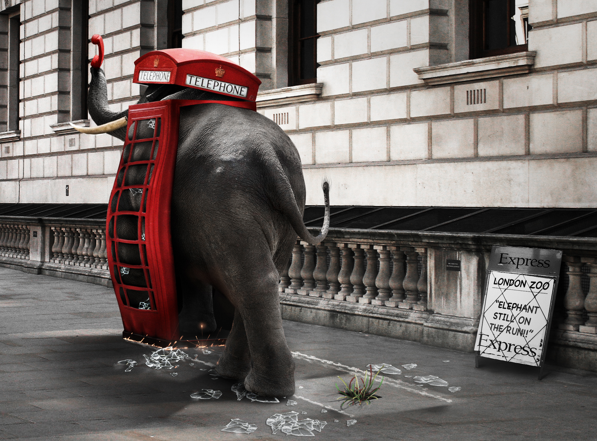 The Elephant in the Phone Booth